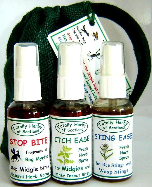 the Beach Bugout Bag